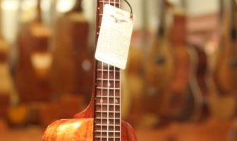 best cheap ukuleles
