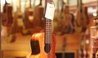 best ukuleles under 200