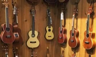 tenor concert baritone soprano ukulele